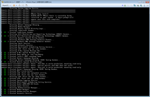 VMware027