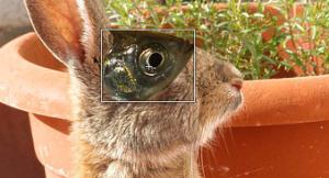 GIMPで位置やサイズの変更01