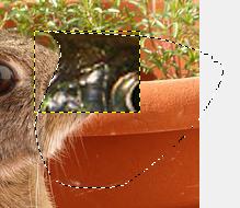 GIMPで位置やサイズの変更07