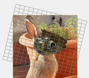 GIMPで位置やサイズの変更10