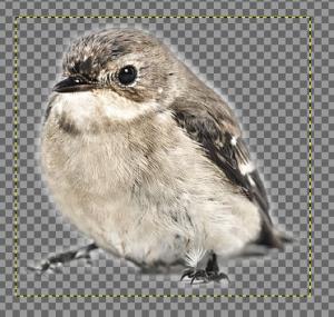 GIMPで電脳はさみを使う05
