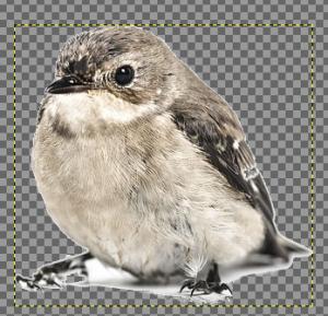 GIMPでファジー選択を使う05