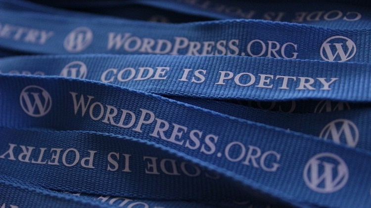 wordpress-552922